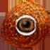 Chameleon eye 2