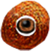 Chameleon eye 3